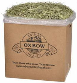 Oxbow Western Timothy Hay Small Animal Food