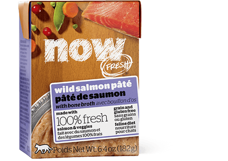 Petcurean NOW FRESH CAT Food Grain Free Wild Salmon Pâté with Bone Broth Cat Wet Food