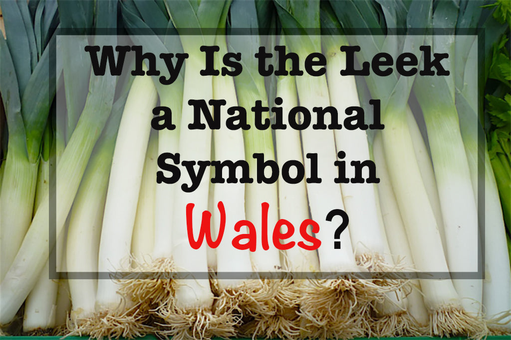Why Is The Leek A National Symbol In Wales 1sttheworld