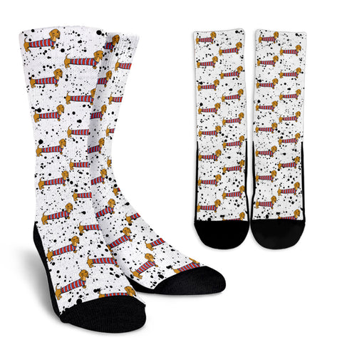 White Socks With Brown Dachshunds K2 | 1sttheworld.com