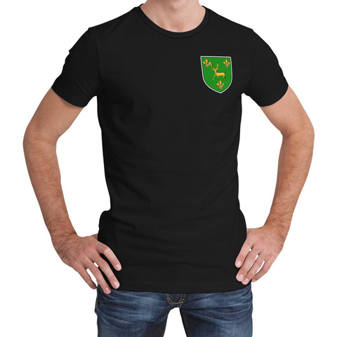 Young (of Tredrysi, Pembrokeshire) Wales T-Shirt Welsh Surname A7