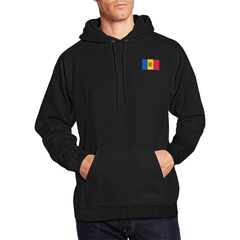 Moldova Hoodie - Flag And Coat Of Arms At The Back - BN07