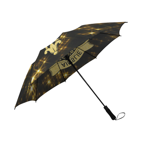 Ainslie Tartan Umbrella Golden Star TH8