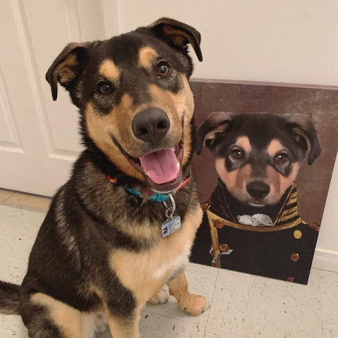 The Admiral - Custom Pet Canvas Prints