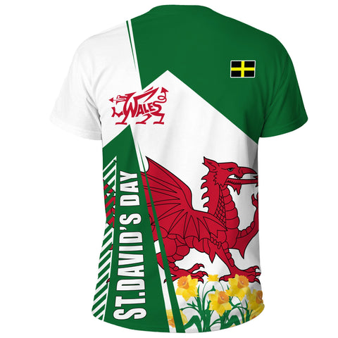 1stTheWorld T-Shirt St. David's Day Wales A30