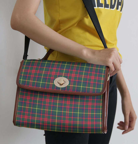 Tartan Bag - Mackintosh Hunting Modern Canvas Handbag A9