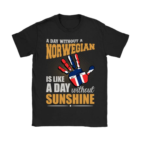 Image of A Day Without Norwegian G2 Gildan Womens T-Shirt / Black S T-Shirts