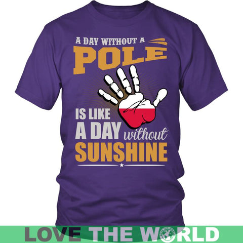 Image of A Day Without Pole G2 Gildan Womens T-Shirt / Black S T-Shirts