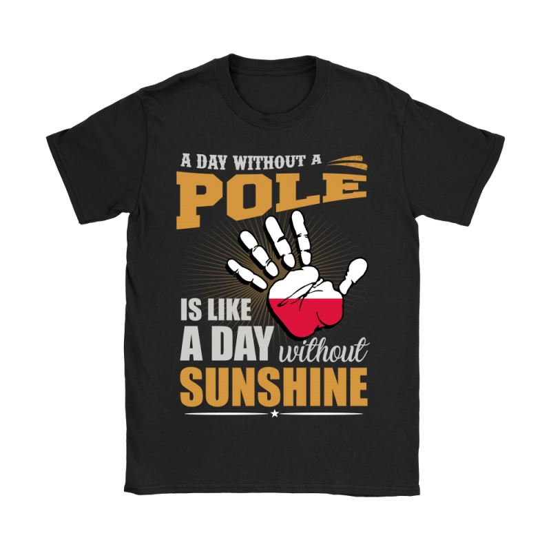 A Day Without Pole G2 Gildan Womens T-Shirt / Black S T-Shirts