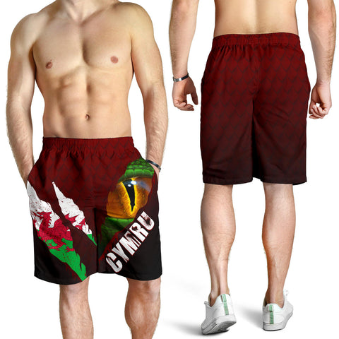 Welsh Shorts - Dragon Eyes (Men) | Clothing | Love The World