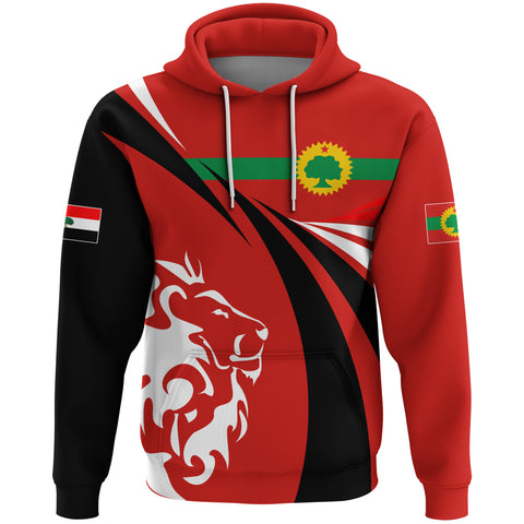 Image of 1stTheWorld Oromia Hoodie, Oromia Swirly Lion Flag A10