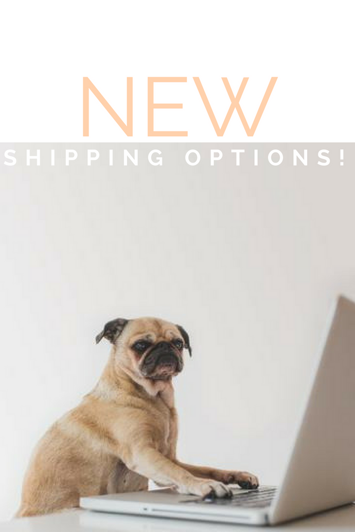 New Shipping Options Hurrah!