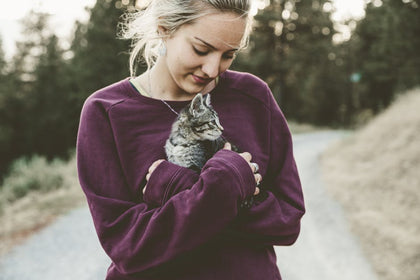 Shop Cat, Girl Holding Kitten, Pet Essentials, Cat Product Range
