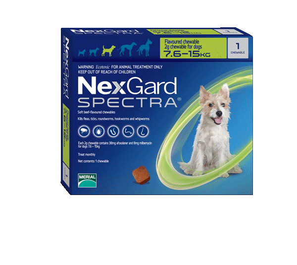 Nexgard Spectra Flea Tick & Worm Chewable Treatment 7.6-15kg