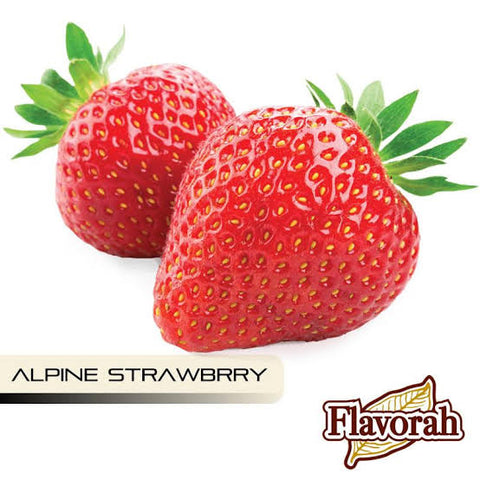 Alpine Strawberry *** Flavour FLV