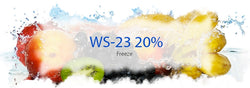 WS23 ICE (WS 23 - 20%) Flavor BVC