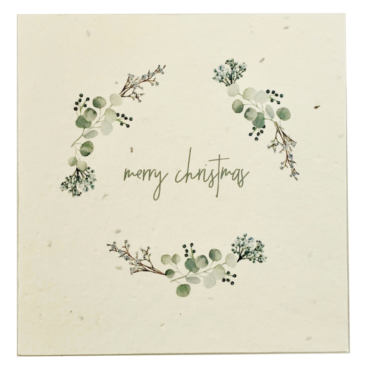 Nurturing Nature Plain Card -Frosty Merry Christmas