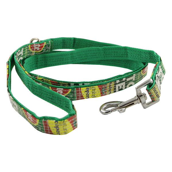 Real Animals Dog Lead 20mm -Multicolour & Green