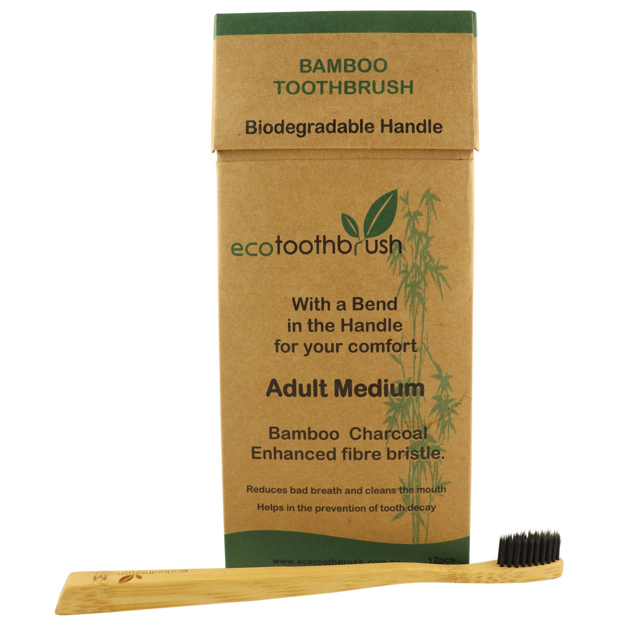 Eco Toothbrush Adult -Medium