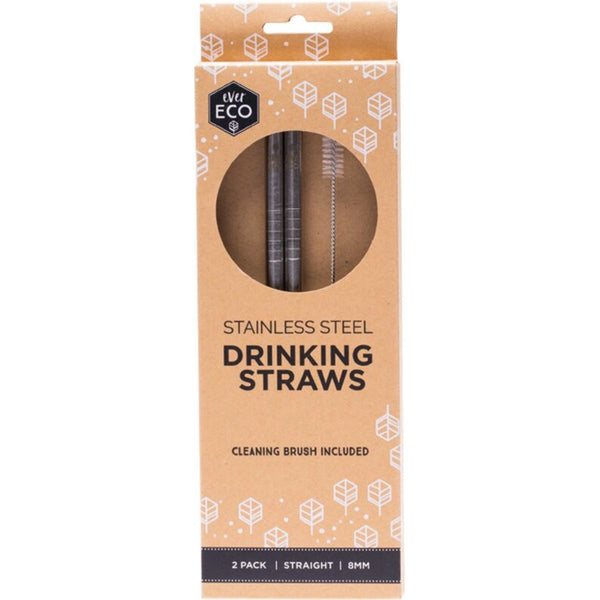 Ever Eco Stainless Steel Straw 2 Pack -Straight