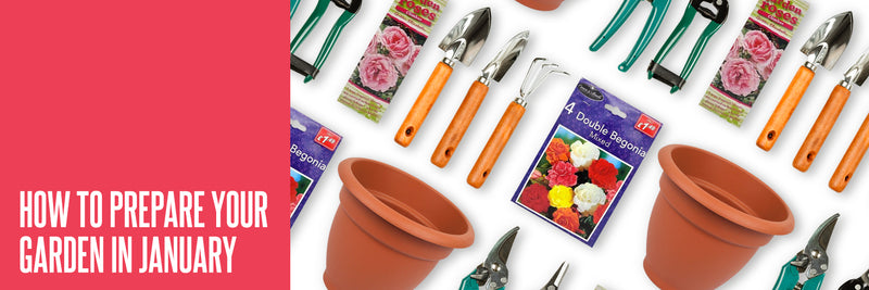 How To Prepare Your Garden In January