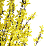 Artificial Forsythia Tree Yellow Indoor Outdoor 160cm (5ft) - FabFinds