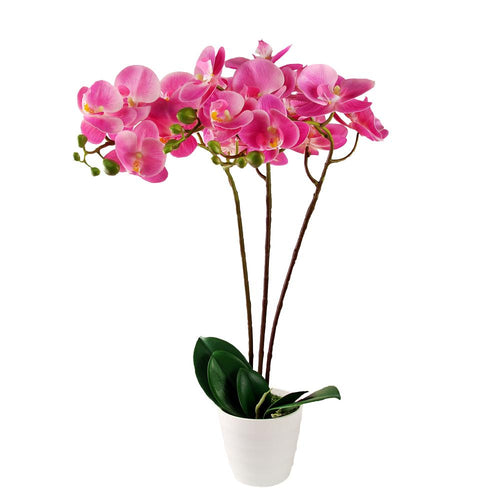 Artificial Orchid Blossom Tree Indoor Outdoor 55cm (1.8ft)