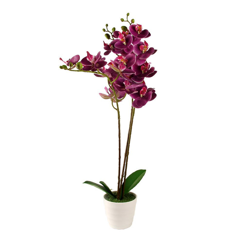 Artificial Orchid Blossom Tree Indoor Outdoor 55cm (1.8ft) - FabFinds