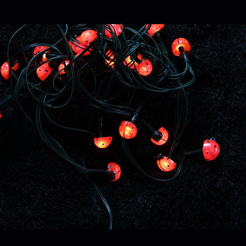 Ladybird Glowing LED Solar String Lights
