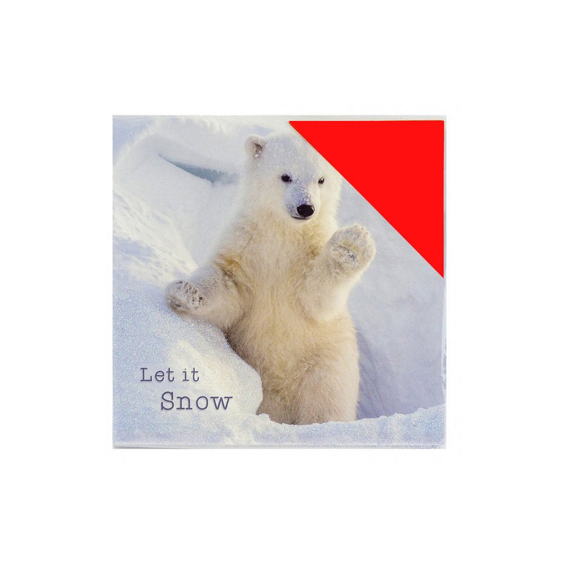 Festive Polar Bear and Penguin Christmas Cards Pack of 16 - FabFinds