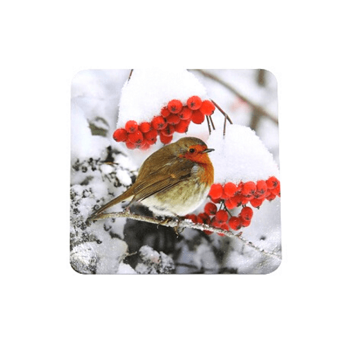 Festive Robin Christmas Coasters 4 Pack - FabFinds