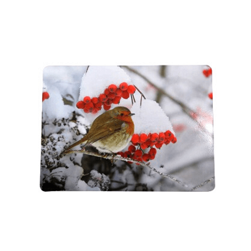 Festive Robin Christmas Place-mats 4 Pack - FabFinds