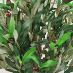 Artificial Olive Fruit Tree 90cm (3ft) - FabFinds