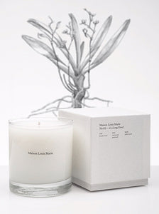 CANDLE - LE LONG FOND NO.02