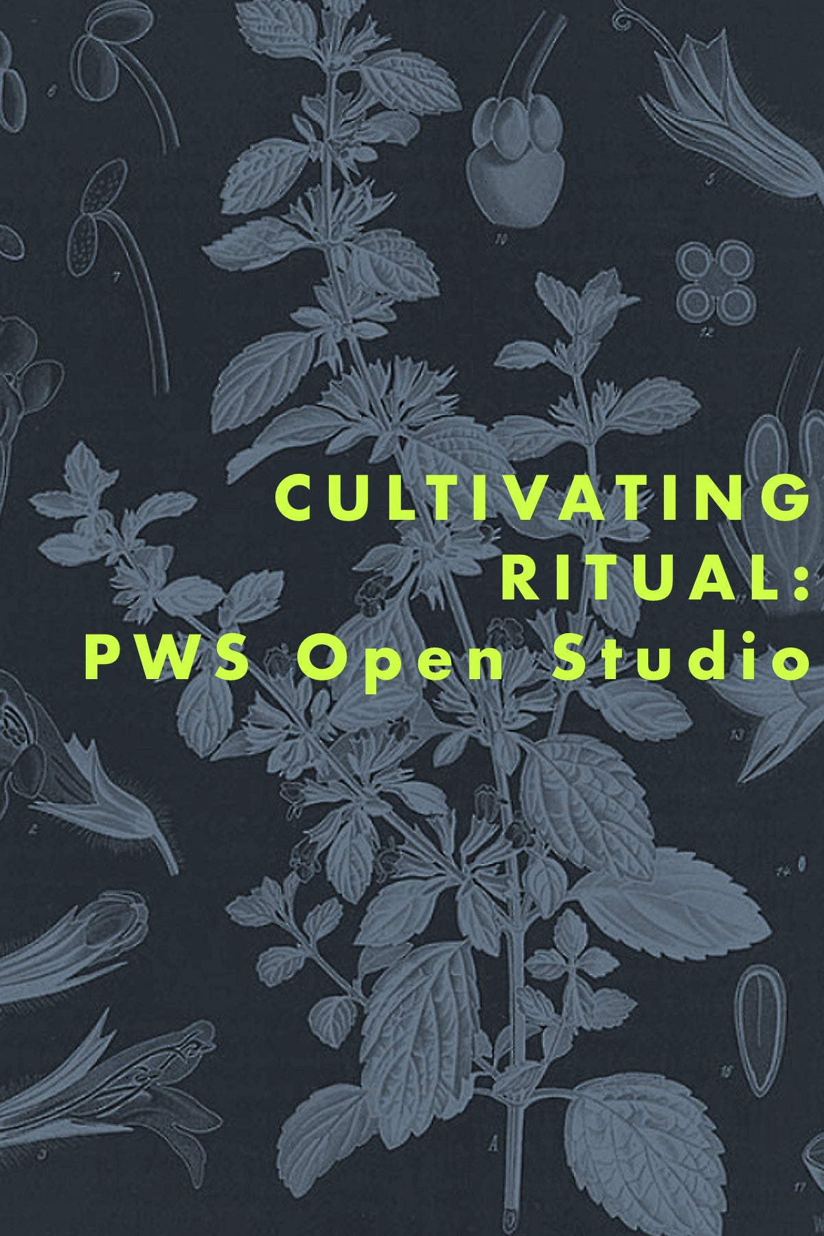 CULTIVATING RITUAL: PWS Open Studio