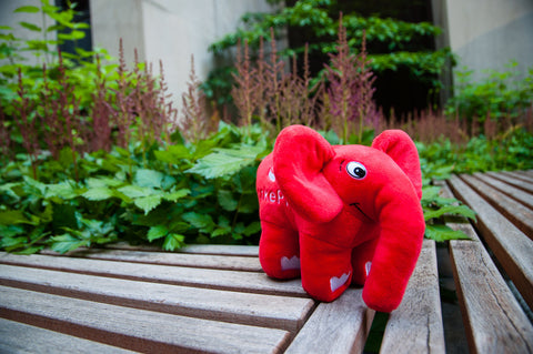 CakePHP ElePHPant