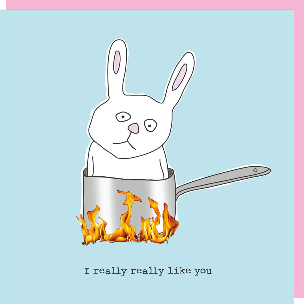 Bunny in a saucepan with burning flames below on a blue background