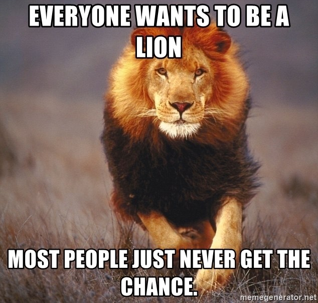 Everyone Wants to be a LION.