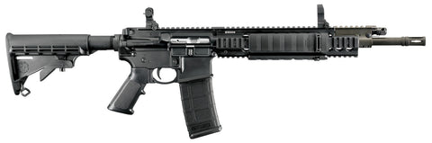 ar15 rifle with adjustable stock flip up sights and 30 round magazine