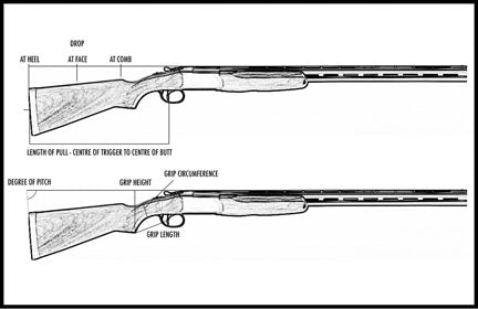 line drawing of a shotgun showing the dimensions and measurement terminology