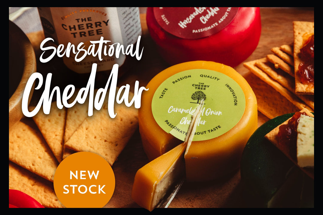Sensational Cheddar Cheeses