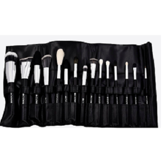 901 15 pc Crown Pro Brush Set - Crownbrush
