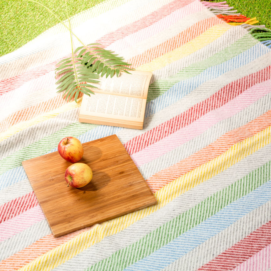Rainbow coloured picnic throw