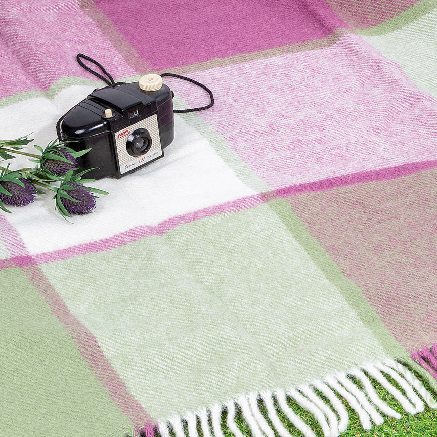 purple and green check picnic blanket