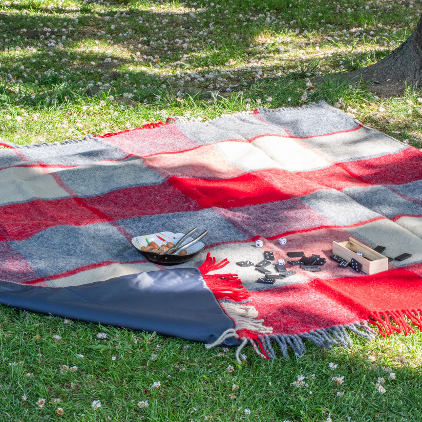 Red and grey checked picnic blanket