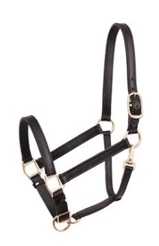 Leather Track Halter w/ Snap & Adjustable Chin - Havana brown