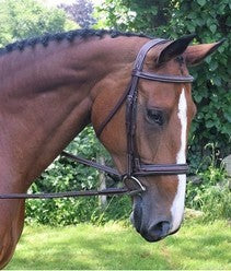 Black Oak Laurel Bridle w/ Ergonomic Crown