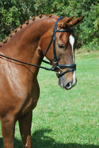 Red Barn Travers Bridle