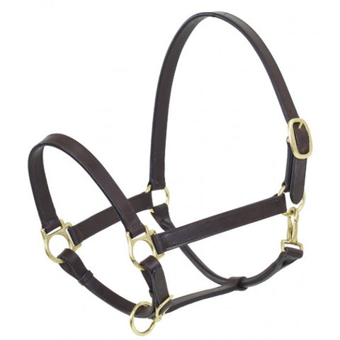 Leather Stable Halter, Brown
