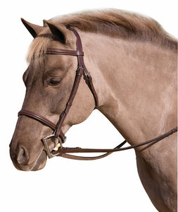 HDR Plain Raised Pony Bridle - Oakbark